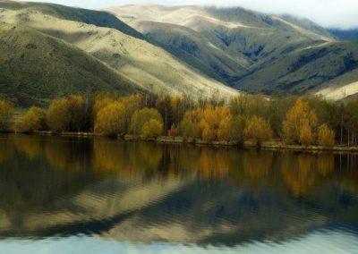 NZ - DKMARPLE - LAKE